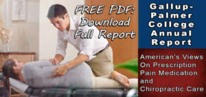 opiod addiction, gallup-palmer chiropractic report, prescription pain medication, chiropractic care